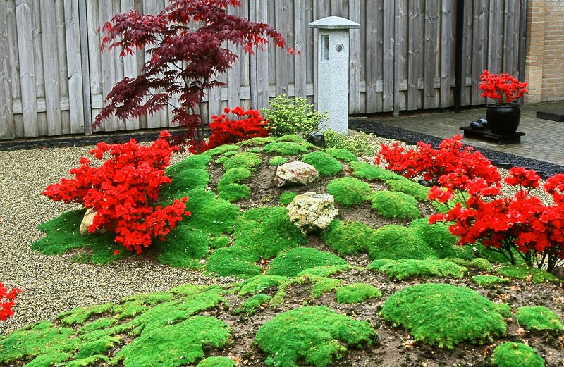 Bekend kleine japanse tuin sq 48 blessingbox for Kleine tuinvijver